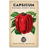 Heirloom seeds - capsicum wonder sweet bell