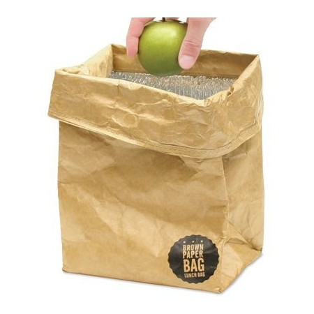 0790cd0e003 Brown paper Tyvek insulated lunch bag   Biome
