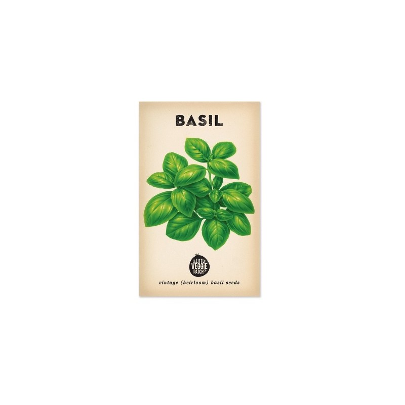Heirloom seeds - basil sweet genova