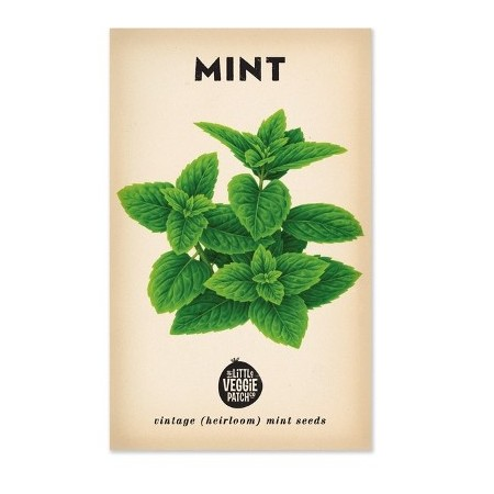 Heirloom seeds - mint peppermint