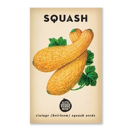 Heirloom seeds - squash golden summer crookneck