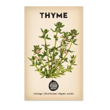 Heirloom seeds - thyme summer