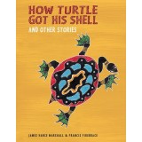 How turtle got his shell