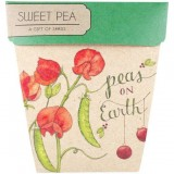 Sow 'n Sow Christmas Card with Seeds - Peas on Earth