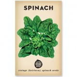 Heirloom Seeds - Spinach