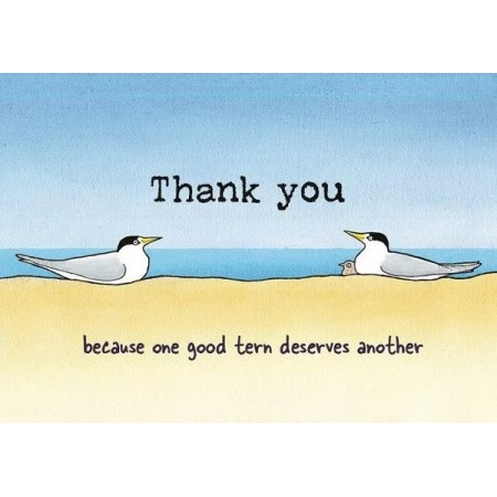 Paula Peeters Wildlife Greeting Card Thank You Terns