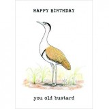 Paula Peeters Wildlife Greeting Card Birthday Bustard
