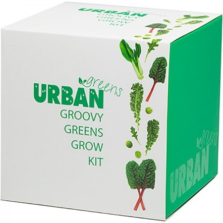 UrbanGreens Grow Kit Cube - Groovy Greens