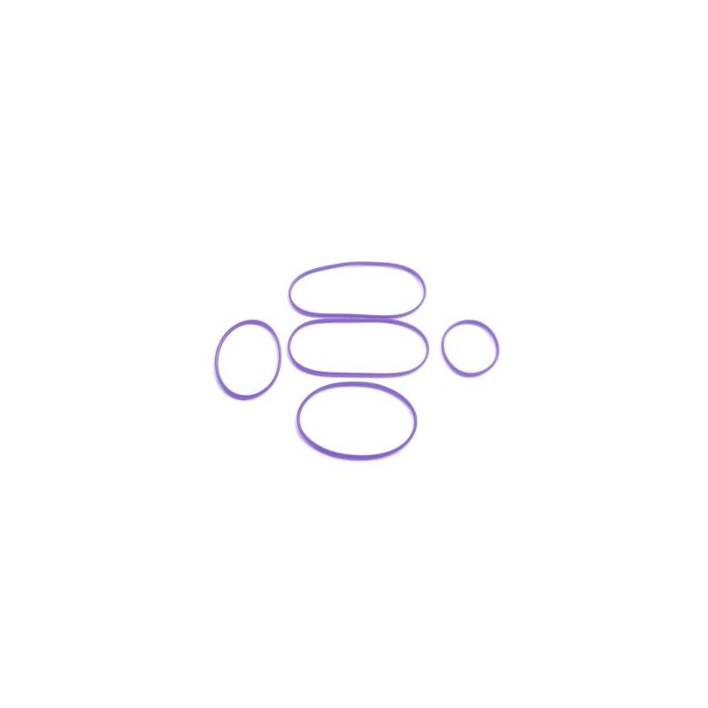 Go Green Lunch Box Replacement Seals (5pk) - Purple