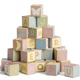 Micki Wooden Pastel Alphabet Blocks
