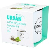 UrbanGreens Grow Your Own Tea Kit - Peppermint