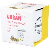 UrbanGreens Grow Your Own Tea Kit - Chamomile
