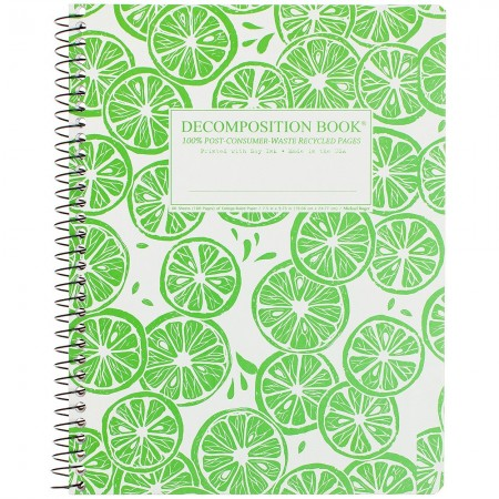 Decomposition Spiral Notebook - Limes