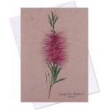 The Linen Press Card - Candy Pink Bottlebrush