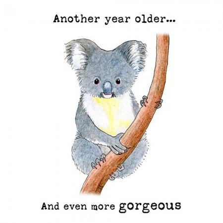 Paula Peeters Wildlife Birthday Card - Another Year Older Koala