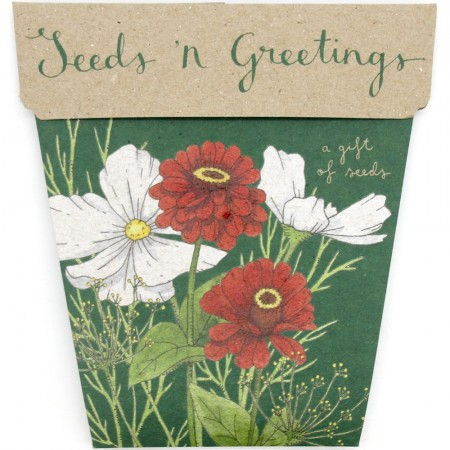 Sow 'n Sow Christmas Card Seeds 'n Greetings