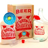 BrewSmith Galactic Golden Ale Kit