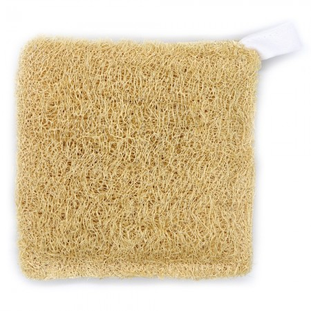 Luffa vegetable square sponge