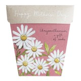 Sow 'n Sow Mother's Day Seed Card - Chrysanthemum