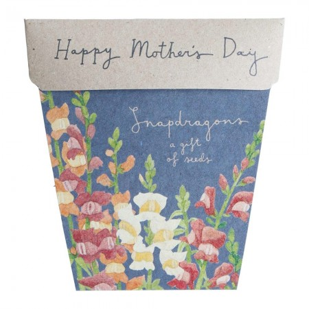 Sow 'n Sow Mother's Day Seed Card - Snapdragon