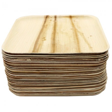 Palm Leaf Dinner Plates 25pk - Square