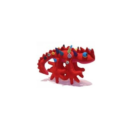 Buy Australian Barefoot thorny devil