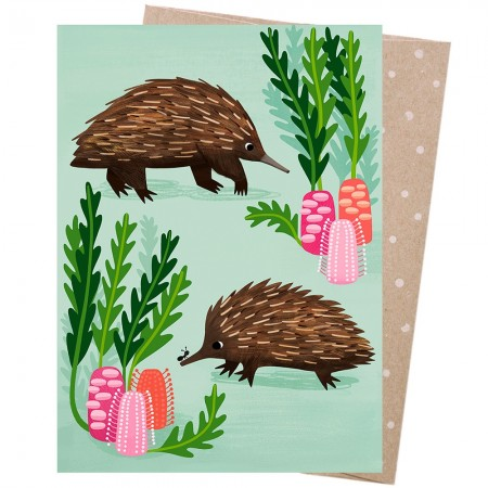 Earth Greetings Card - Short-Beaked Echidnas
