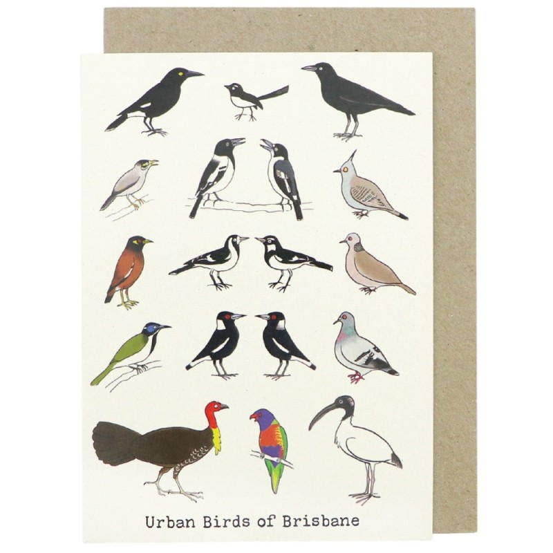 PP Wildlife Greeting Card Urban Birds Brisbane