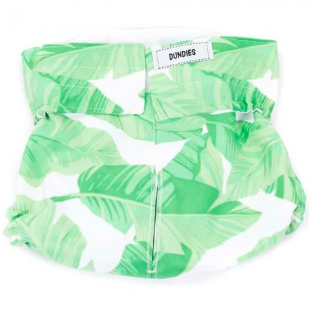 Dundies Snappies Pet Nappy - Tropical