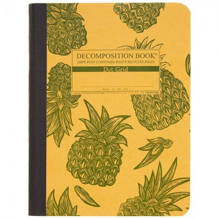 Decomposition Large Bound Notebook (Dot Grid) - Pineapples