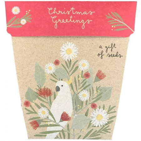 Sow 'n Sow Christmas Greeting Card with Seeds - A Gift of Seeds