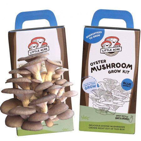 Little Acre Gourmet Mushrooms Grow Kit - Blue Oyster