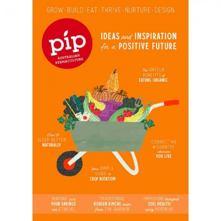 Pip Magazine - Issue 19
