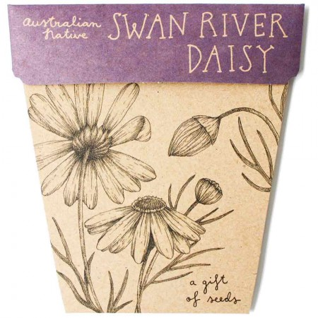 Sow 'n Sow Gift of Seeds Greeting Card - Native Swan River Daisy