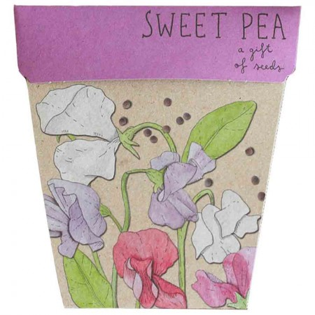 Sow 'n Sow Gift of Seeds Greeting Card - Sweet Pea