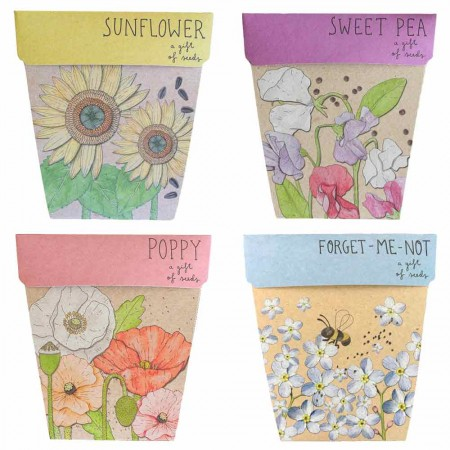 Sow 'n Sow Seed Gift Set Four Flower Gift of Seeds - Set of 4