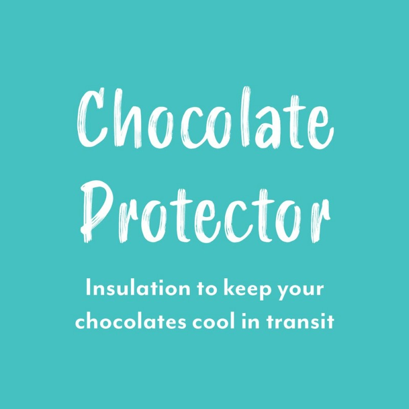Ice Pack & Liner for Chocolate Shipping
