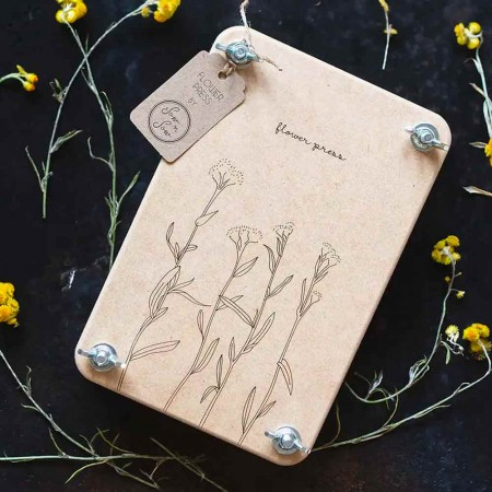 Sow 'n Sow Flower Press - Billy Buttons