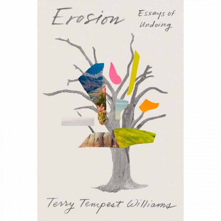 Erosion - Essays of Undoing