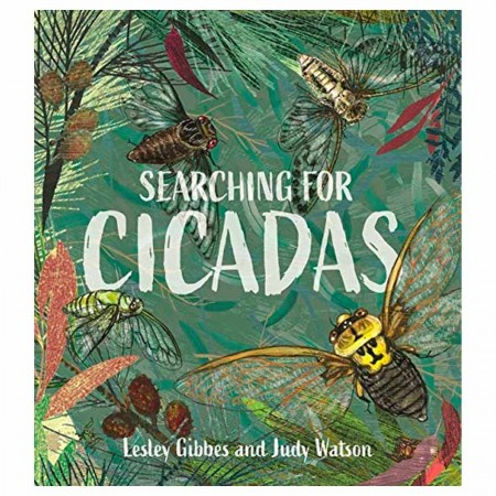 Searching For Cicadas