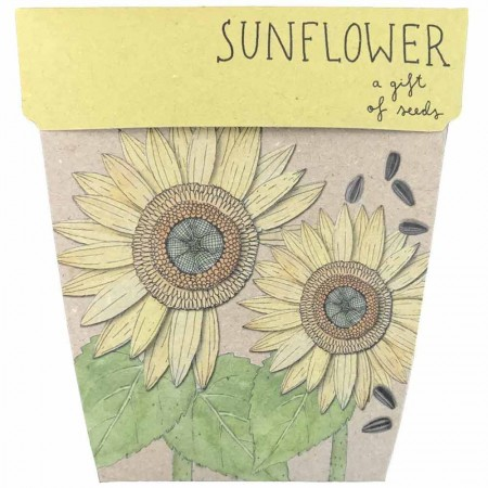 Sow 'n Sow Gift of Seeds Greeting Card - Sunflower