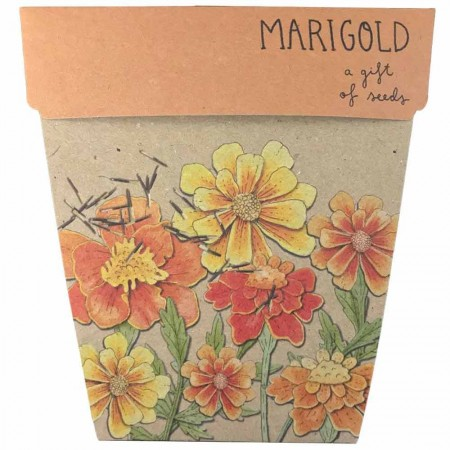 Sow 'n Sow Gift of Seeds Greeting Card - Marigolds