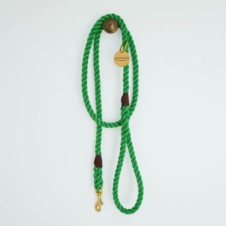 Animals In Charge All Weather Rope Leash - Leafy Green Brass