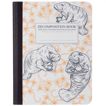Decomposition Large Bound Notebook (Lined) - Manatea