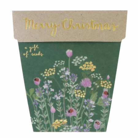 Sow 'n Sow Gift of Seeds Christmas Card - Merry Christmas (Herb)