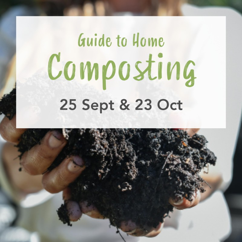 'Guide to Home Composting with Seed the Ground' Sat September 23 Workshop AM