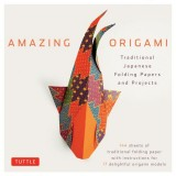 Amazing Origami (boxed kit)