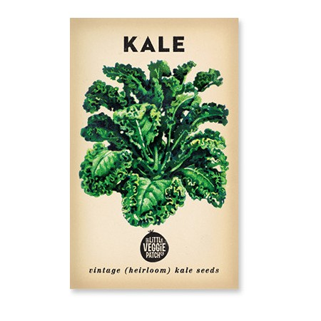 Heirloom seeds - kale dwarf blue