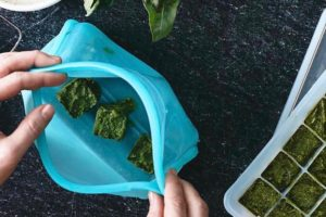 Freeze food without throwaway single use plastic | Biome Eco Stores