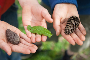 6 ways to get kids interested in nature